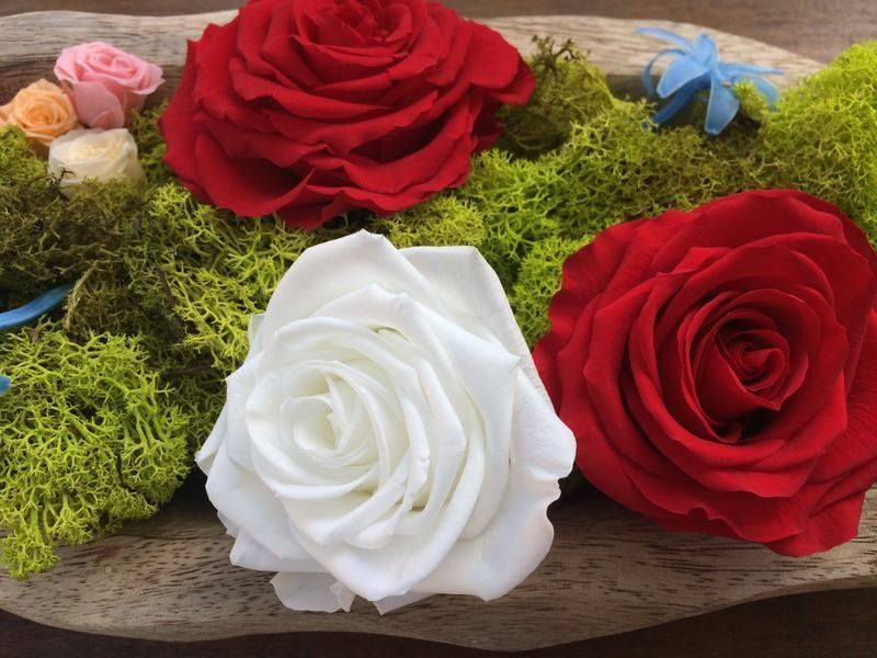 flores preservadas¿A qué llamamos flores preservadas naturales?