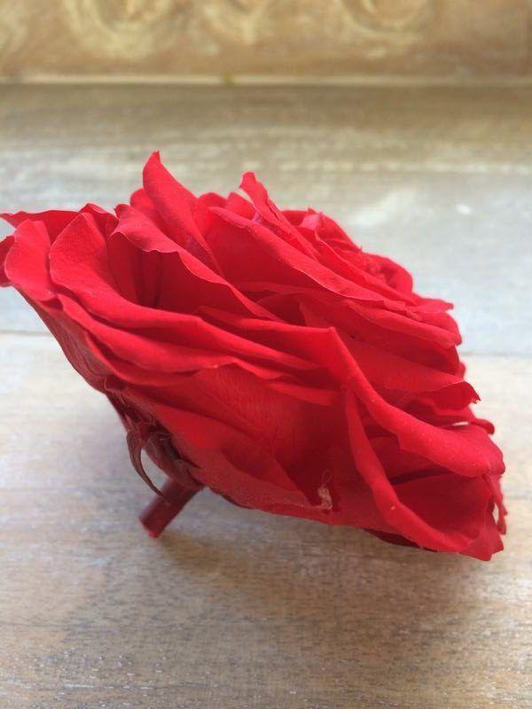 Rosa Preservada lifilizada tamaño King
