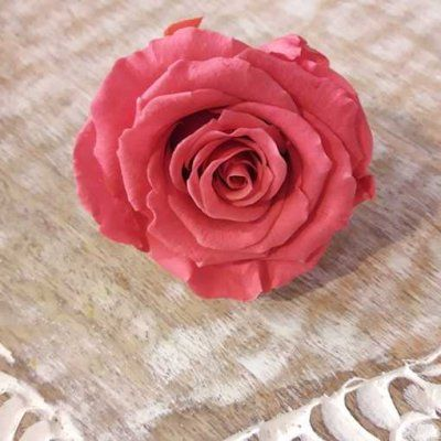 Rosas Rosa Oscuro Tamaño Standard