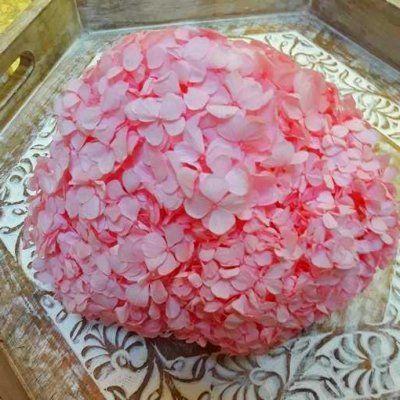Hortensia Preservada Premium Rosa