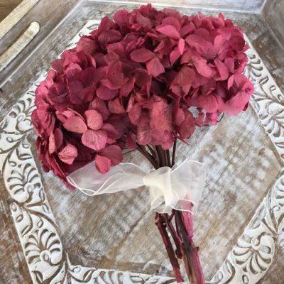 Hortensia Preservada Standard Rosa