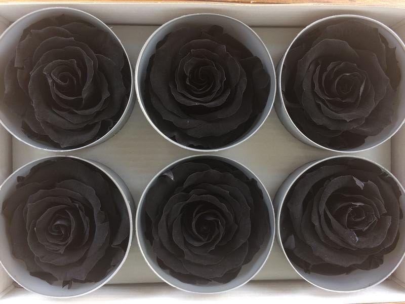 Rosas preservadas Negras Tamaño Extra