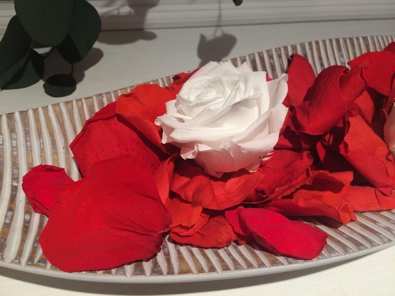 Petalos de Rosa Natural Preservados Rojo