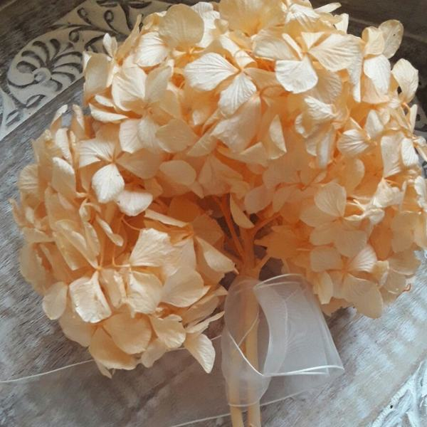 Hortensia Preservada Premium Naranja