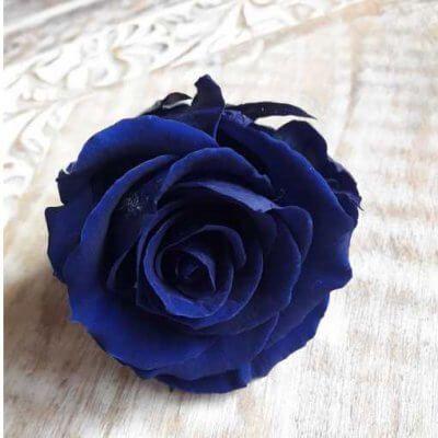 Rosa Preservada tamaño Extra Azul Intenso