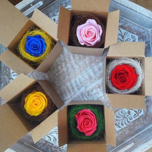 Rosa Preservada en caja de Regalo