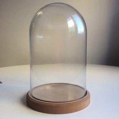 Campana de Cristal con base de Madera