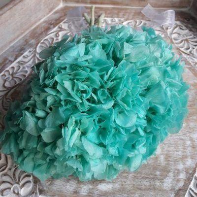 Hortensia Preservada Premium Verde Esmeralda