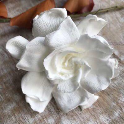 Gardenia Preservada Color Blanca