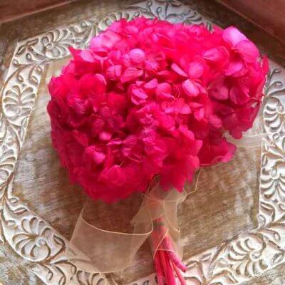 Hortensia Preservada Premium Fucsia