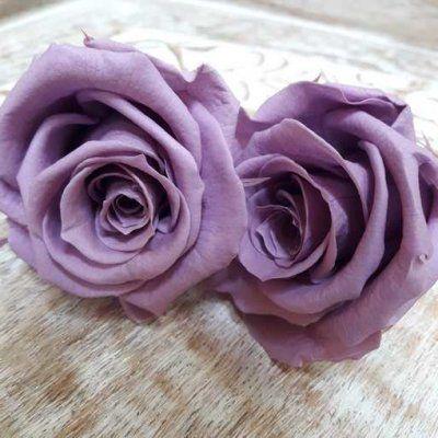 Rosas preservadas talla Mini Lila