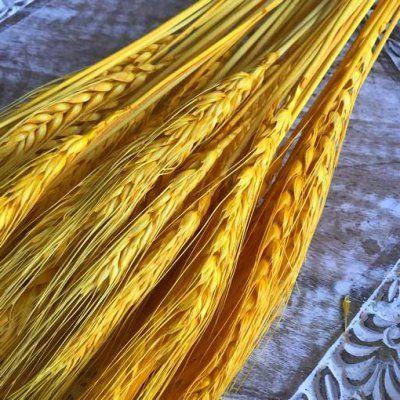 Espigas de trigo colores de temporada