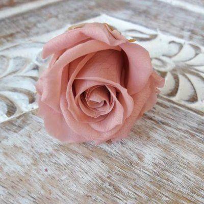 Rosas preservadas talla Mini Cherry Blossom